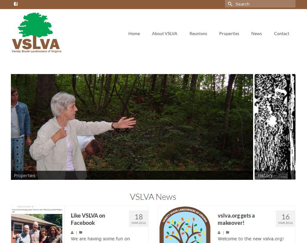 vslva.org